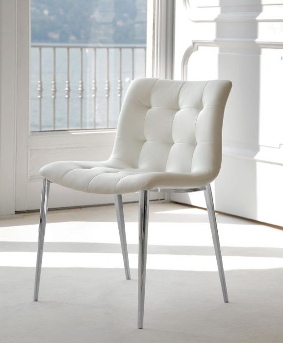 Cougar Dining Chairs