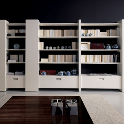 One & Only Bookcase